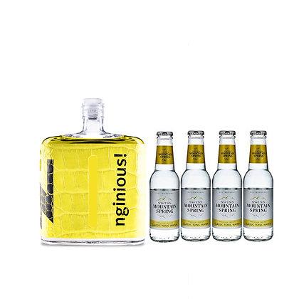 nginious! Colours: Yellow inkl. 4 Swiss Mountain Tonic