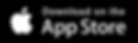 App store logo1