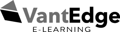 VantEdge Logo.png