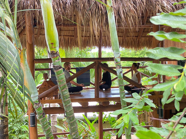 Yoga Wellness Center - Fuego Lodge Yoga Resort, Santa Teresa Beach, CR