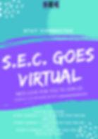 S.E.C.-goes-virtual 2.jpg