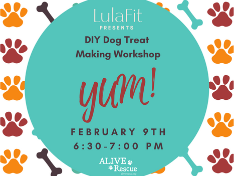 DIY DOG TREAT MAKING WORKSHOP