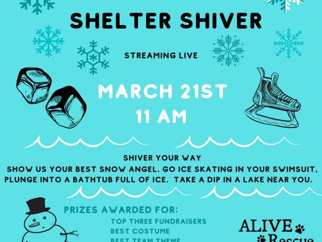 12TH ANNUAL SHELTER SHIVER