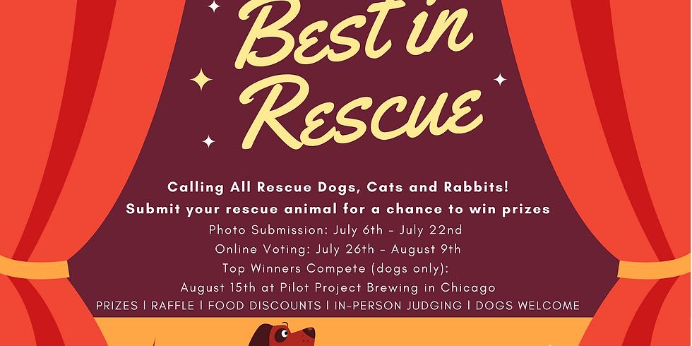 Best In Rescue