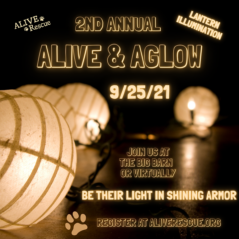 2nd Annual Alive & Aglow