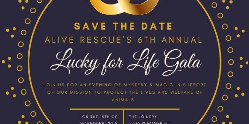 Fundraising Event 1