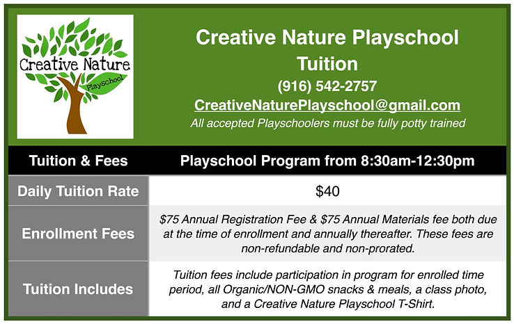 Creative%20Nature%20Playschool%20Tuition