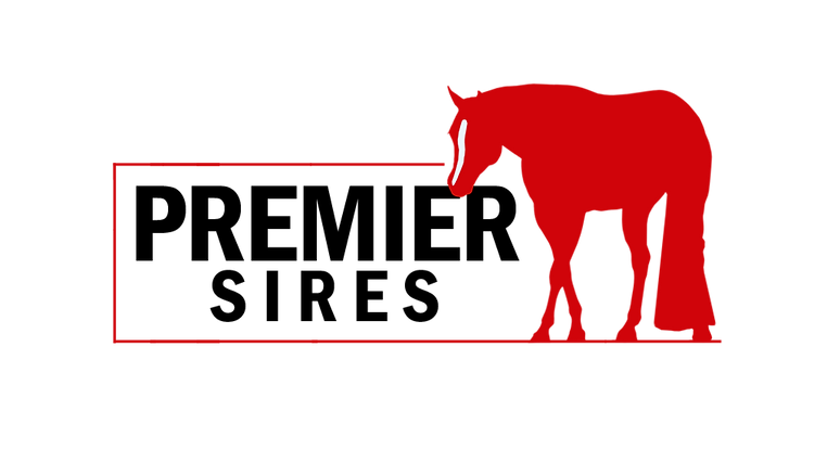 PS-logo2018BLKLTR.png