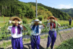 教育民泊_3_兵庫県豊岡市.jpg