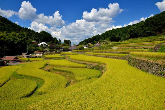 中国山地を源とする揖保川、千種川が播磨灘に注ぎ、これまで多彩な文化を育んできました。