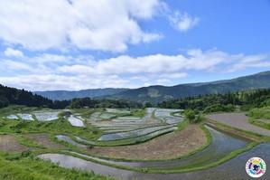 兵庫県に少しでもご興味をもっていただけましたら、移住の相談窓口「カムバックひょうごセンター」まで気軽にご連絡ください。電話や対面に加えオンラインでも受け付けています。皆様のご相談お待ちしております。