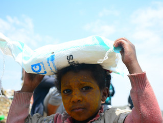 65 households at al-Azaraqeen IDP hosting site in Sana'a receive food supplies