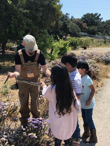 Robert holding a garden snake for kids to meet.