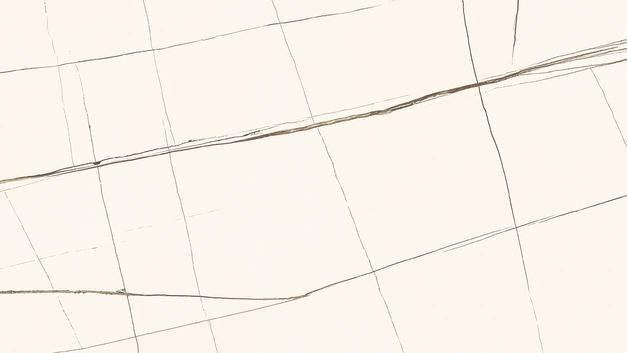 COLAS BEIGE-3.jpg