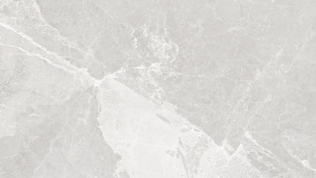 NIVEA GREY-B .jpg