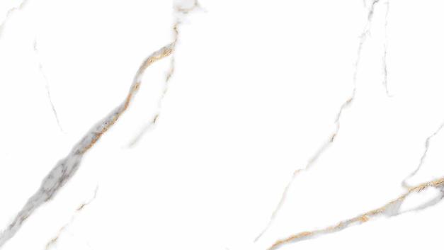 GOLDEN WHITE-1.jpg
