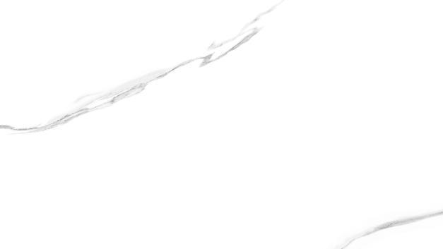 CALCATTA WHITE-3.jpg