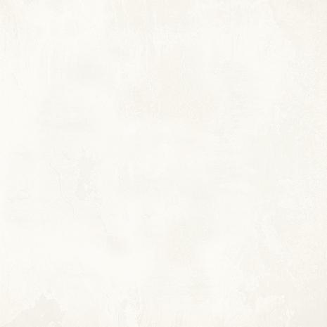 FIGO SILVER-2.jpg