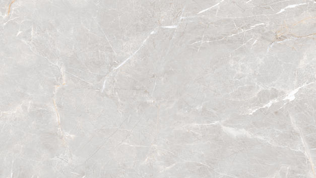 NIVIA WHITE-1.jpg