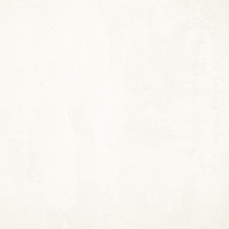 FIGO SILVER-1.jpg