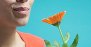 Fleurs Comestibles d'Hiver
