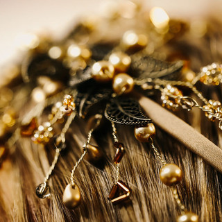 1 Stachys byzantina Hair piece close up