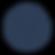Vibe Logo VVP Navy.png