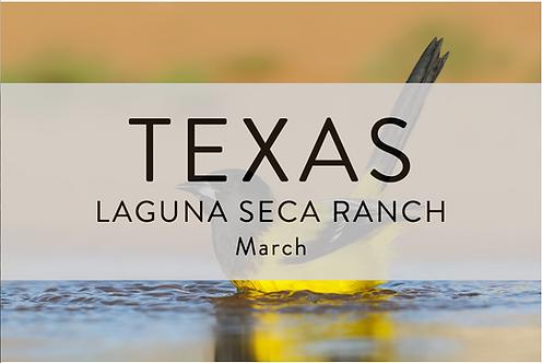 Laguna Seca Ranch | Texas