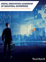 Digitial Innovation Leadership Report