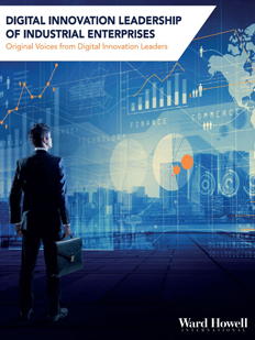Digitial Innovation Leadership Report