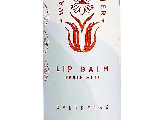 Fresh Mint Lip Balm