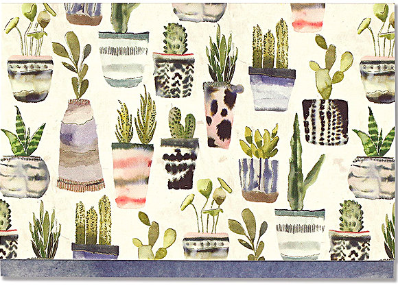 Watercolour Succulents Blank Boxed Cards