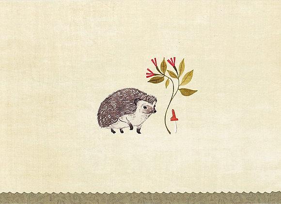 Hedgehog Blank Boxed Cards