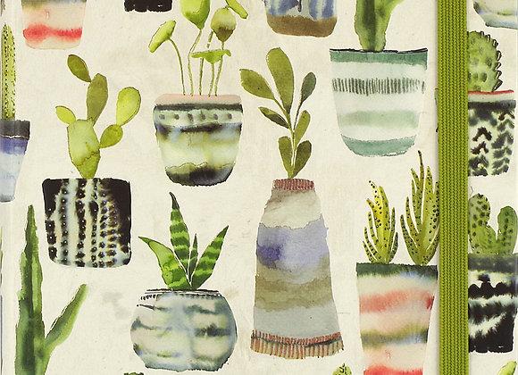 Mid Journal Watercolour Succulents