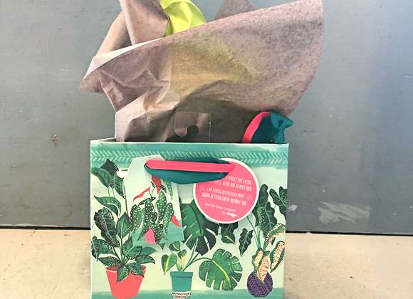 Potted Play Small Gift Bag