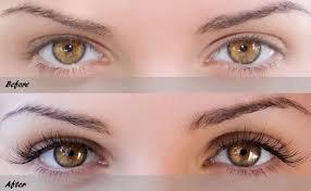 Eyebrow & Eyelash Tint