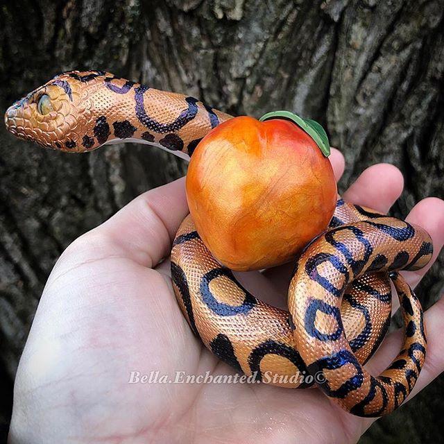 Meet Peaches! A beautiful Rainbow Boa cu