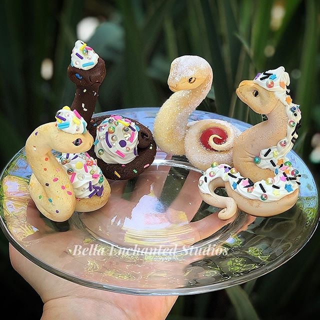 Cupsnakes are for Dessert...and one Jell
