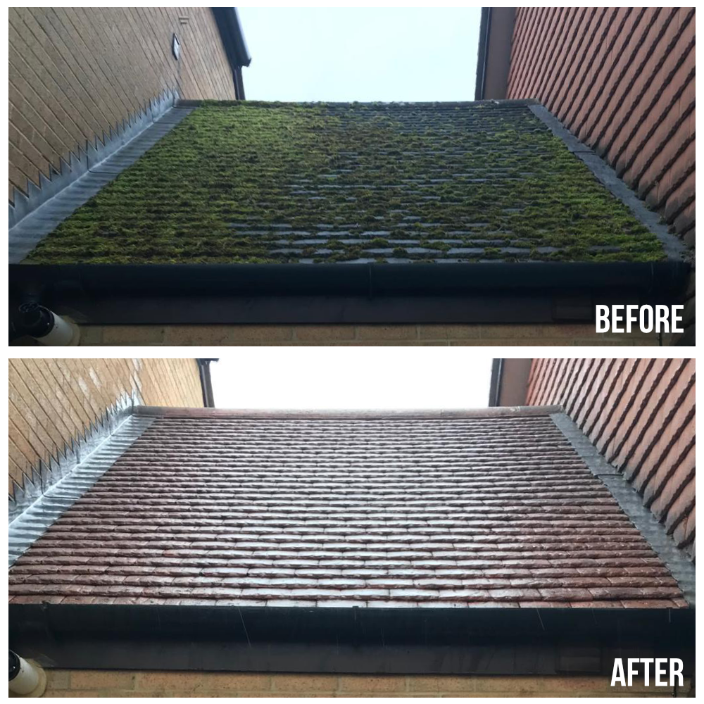 Before & After - Roof 3.png