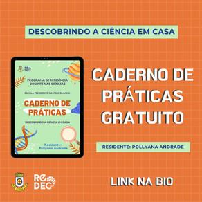 CADERNO DE PRÁTICAS - DESCOBRINDO A CIÊNCIA EM CASA