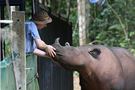 Robin & Rhino.jpg