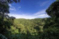 uganda-2111153_1280.jpg