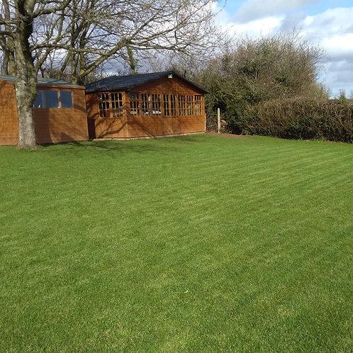 HM Drought Tolerant Grass Seed Mix (Rhizomatous Tall Fescue RTF)