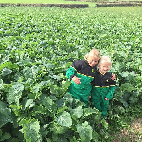 Inka Kale Seed (2kg per acre)