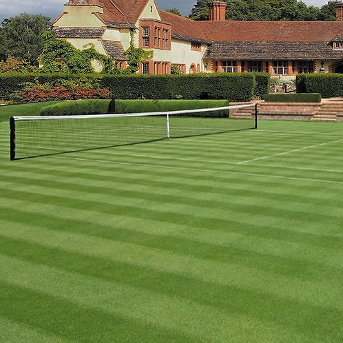 20kg - TN.2 All Rye Tennis Courts Grass Seed Mix (TN2)