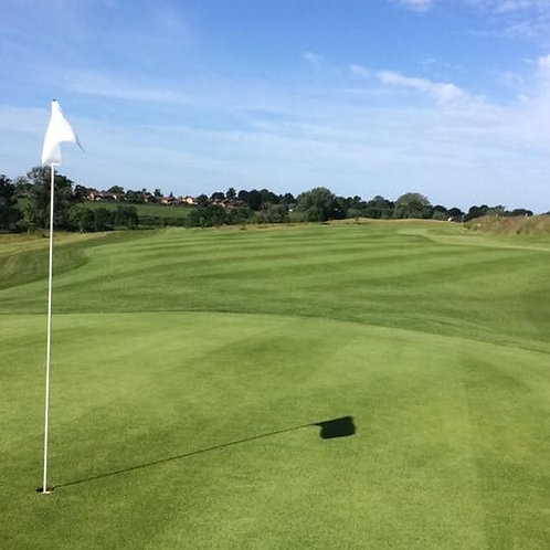 20kg - HG.3 Fescue / Bent Grass Seed Mix (HG3)