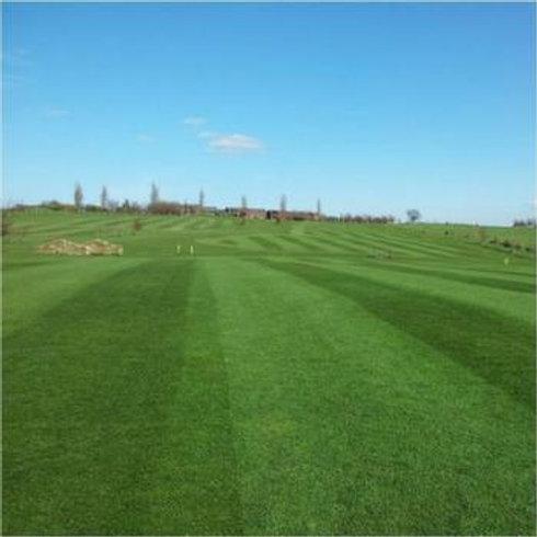 20kg - HF.2 Ryegrass Fairways Grass Seed Mix (HF2)