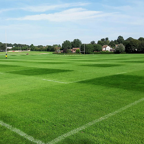 20kg - FR.3 Contractor Football & Rugby Pitch 100% Ryegrass Grass Seed Mix (FR3)
