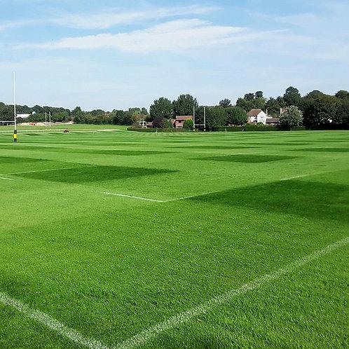 20kg - FR.3 Eco Football & Rugby Pitch 100% Ryegrass Grass Seed Mix (FR3)