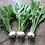 Thumbnail: Whitestar Stubble Turnip Seed (2kg per acre) (AB13)